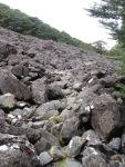 Rocks? What rocks?