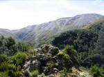 Mt. Winterslow